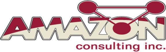 Amazon Consulting, Inc.